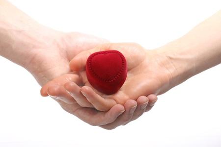 Hands hoding red velvet heart-shaped box; isolated on white photo