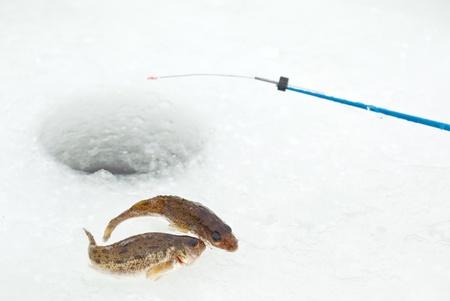 Winter fishing: closeup of ice hole, fishing rod and ruffs Stock Photo