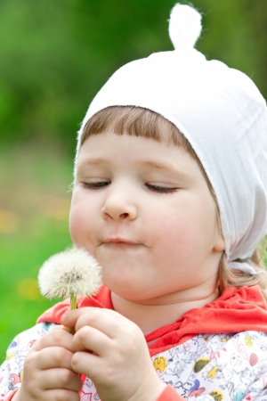 Funny child blowing fluffs holding white dandelion photo