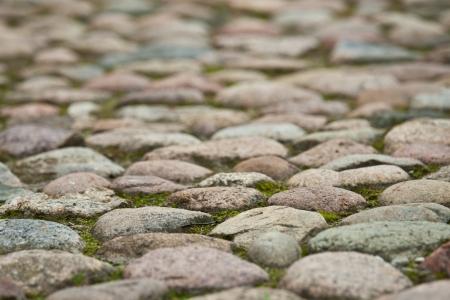 Stony pavement background - closeup shot