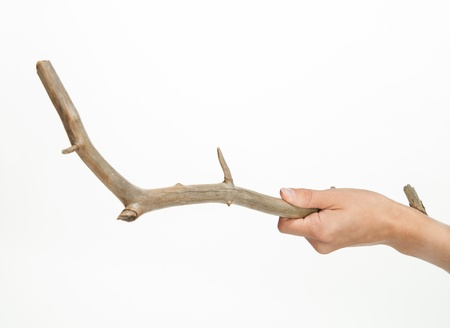 snag: Hand holding a snag