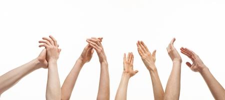 manos aplaudiendo: Grupo de manos que aplauden en el fondo blanco