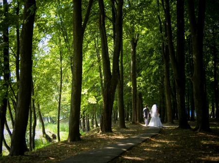 Married couple following the path in summer park; wedding day