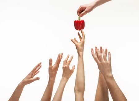 Vele handen willen peper krijgen, maar slechts een wint, witte achtergrond