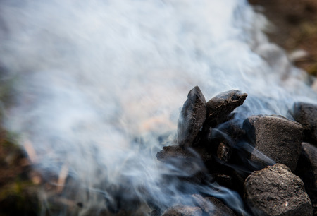 compacted: Fragment of a brome frome charcoal with dense smoke