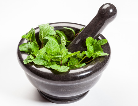 phytotherapy: Brandy mint in a mortar on white background