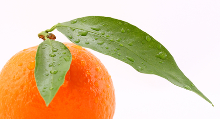 dietology: Ripe tangerine with green leaves and drops of water isolated on white Stock Photo