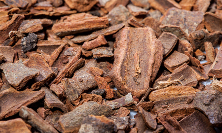 odorous: Cinnamon background - macro shot