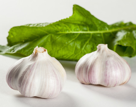 the greens: Heads of garlic and fresh greens on white background
