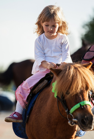 pony girl: Happy smiling little girl  on a pony outdoor Stock Photo