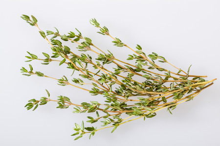 neutral: Fresh thyme on neutral background