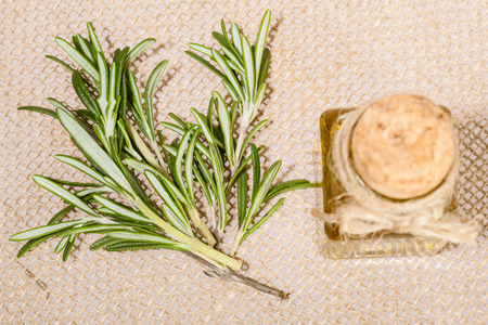 haircare: Fresh rosemary branch and a small bottle of oil - concept of natural skincare and haircare Stock Photo