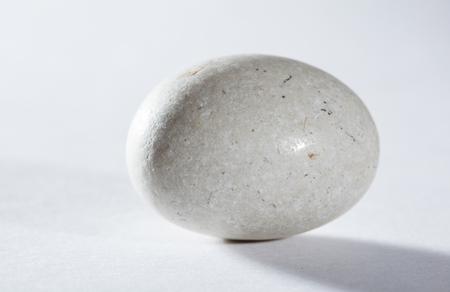 ovoid: White ovoid stone  - studio shot