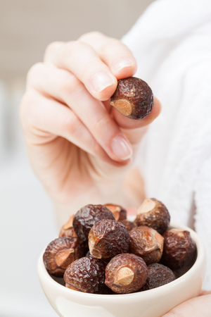 Woman hand holding bowl with soapnuts for organic haircare and laundry