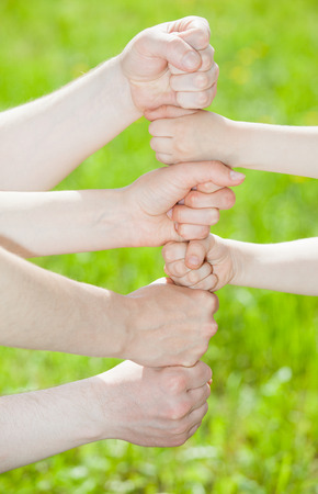 jointly: Hands group on summer green  background
