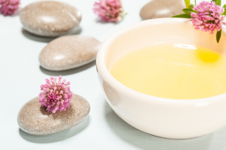 trifolium: Beautiful spa composition: clover flowers, ceramic bowl with natural oil and sea stones on neutral background