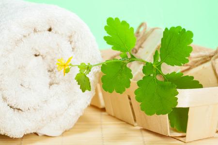 Celandine soap, fresh flower and cotton towel - beautiful bathroom composition Stock Photo