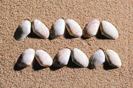 Aquarius Zodiac sign made of seashells