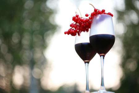 Closeup shoot of the 2 glasses of wine with the bunch of viburnum berries Foto de archivo