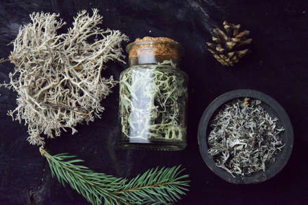 Iceland reindeer moss tincture bio organic