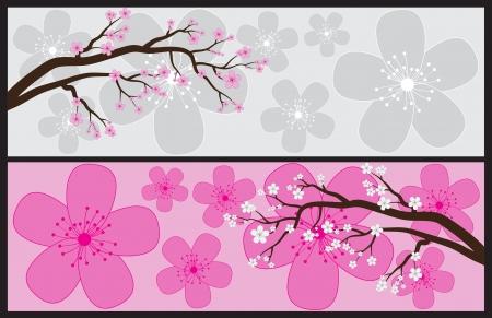 petal: Blossom Banners Illustration