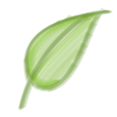 bristle: Bristle Brush Leaf Illustration