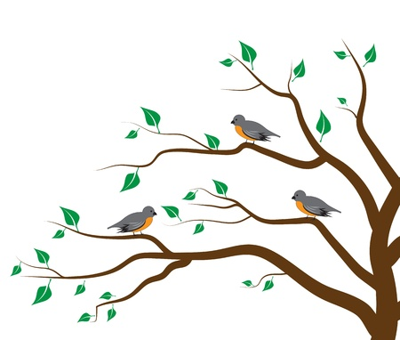 boom met vogels: Boom Vogels Stock Illustratie