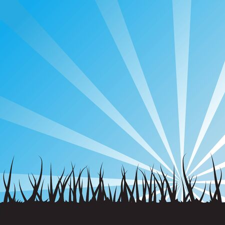 Blue Sunrise Over Grass
