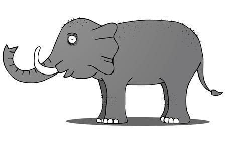 Wild Elephant Illustration