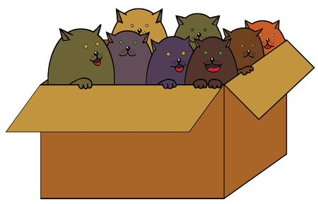 animal shelter: Cats in box Illustration