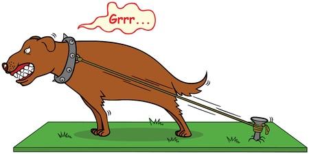 barking: cane che abbaia non morde