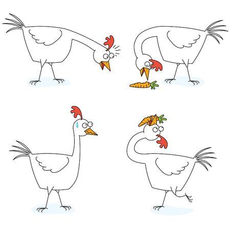 chicken eats a carrot Ilustração