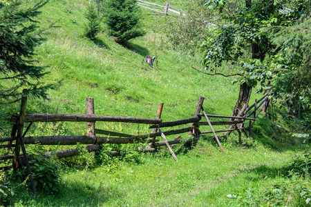 A wooden fence is in the mountain village of Carpathians Stok Fotoğraf