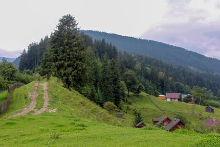 On the left road in the mountain village of Carpathians Standard-Bild