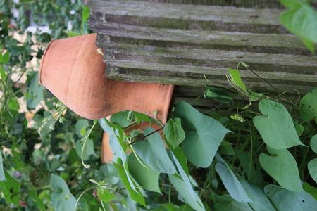 decorative clay vase on wooden fence photo