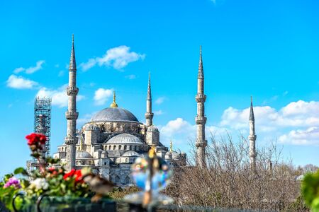Blauwe Moskee in het voorjaar