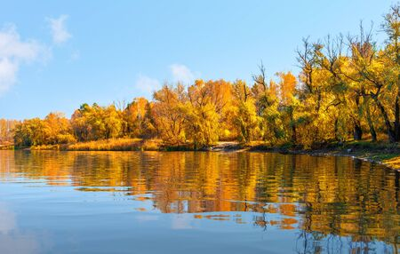 Golden autumn on calm river at sunny day