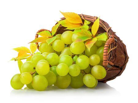Green grape in basket