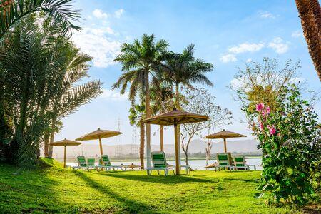 Chaise-longues near Nile Imagens