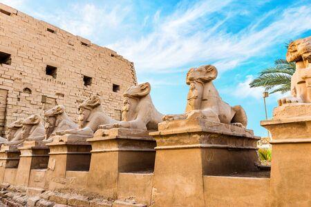Raw of sphinxes in Karnak Temple