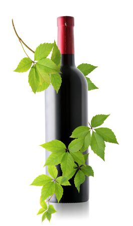 Bottle of wine and grape branch isolated on a white background Imagens