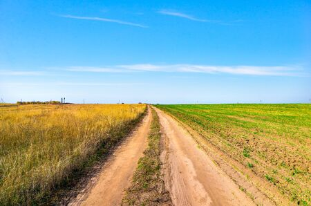 Country road through field at sunny autumn day