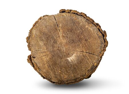 Front view of a log