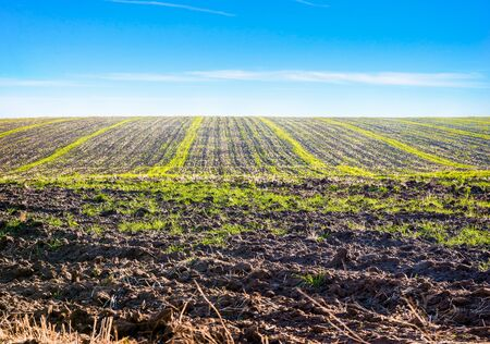 Plowed field and blue sky in countryside Imagens