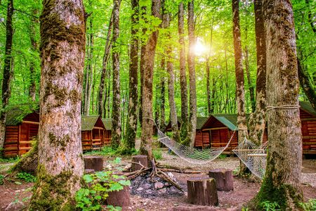 Sunrise in camping of Biogradska Gora National Park, Montenegro