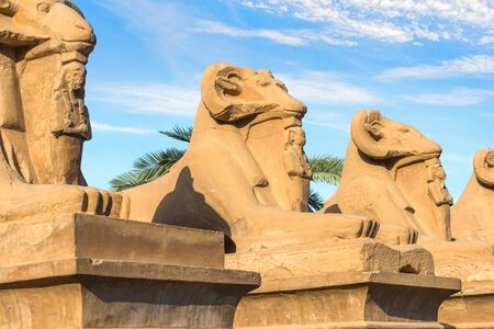 Sphinxes under clouds background.