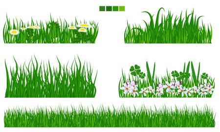 marguerite: vecteur illustr� herbe verte avec des fleurs et des feuilles serti plat couleur solide. collection Long et herbe courte