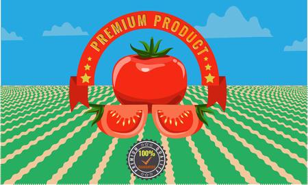 grocer: Organic tomato vintage advertising poster - Metal sign and label design. Solid flat color design. Vector illustration for fresh tomatoes Illustration