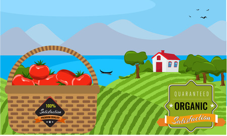 farmland: Farm flat landscape. Tomato Organic food concept, solid, flat color design. Farm landscape concept. Farm landscape background with modern vintage ribbon tag and basket.  Farmland illustration. Illustration