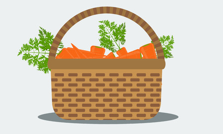 solid color: Fresh carrot, flat solid color style in a wired basket, realistic leaf healthy food, vector icon